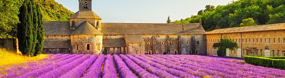 Countryside of Provence for travel